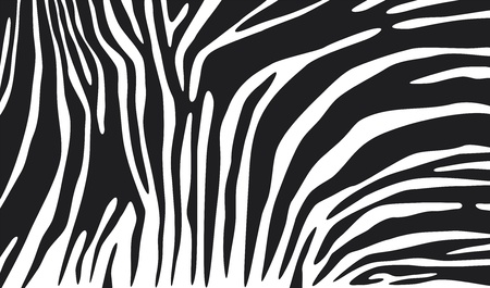 zebra background (zebra skin, zebra pattern) Vector