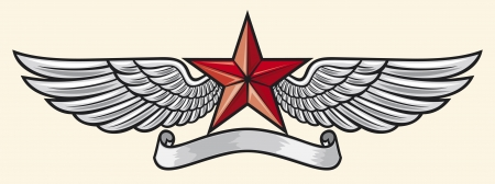 eagle badge: star and wings Illustration