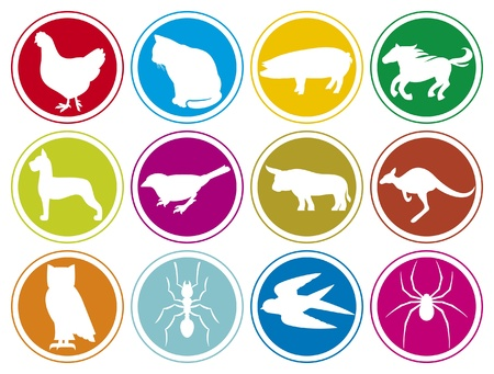 animals icons buttons  animal icons set, animal icons collection, animal buttons, cat, pig, horse, chicken, dog, bird, bull, owl, ant, spider,animal, kangaroo, swallow, pig  Vector