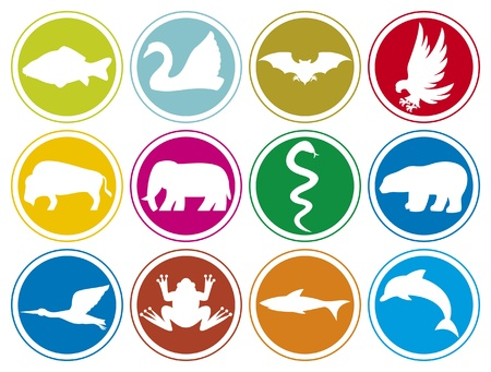 animals icons buttons Vector