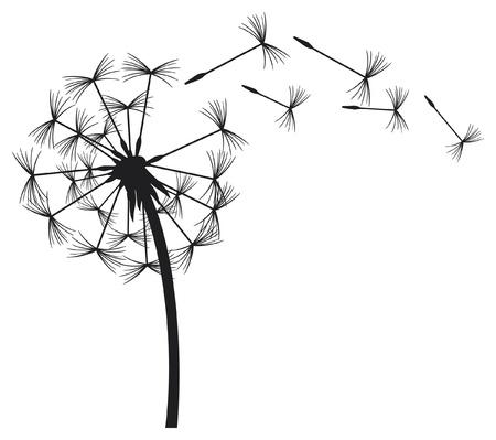 blowing dandelion: dente di leone nel vento Vettoriali