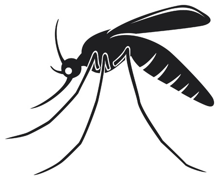 malaria: mosquito Illustration
