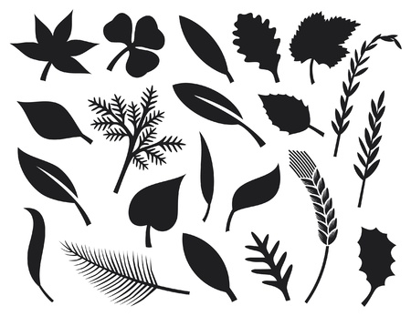 collection of leaf silhouettes - collection leaves Vector
