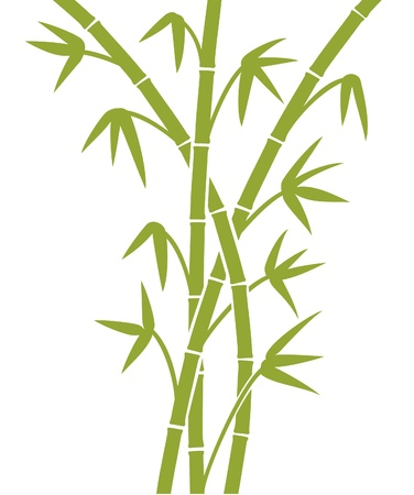 traditionally chinese: green bamboo stems Illustration