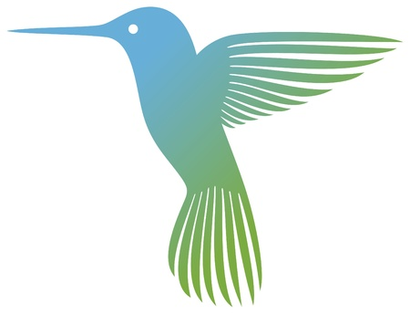 hummingbird  colibri  Stock Vector - 17920091