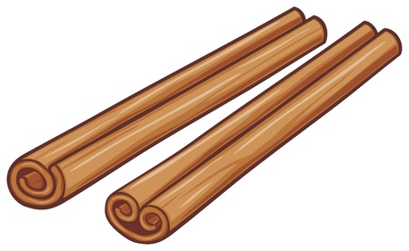 cinnamon sticks: illustration of cinnamon sticks