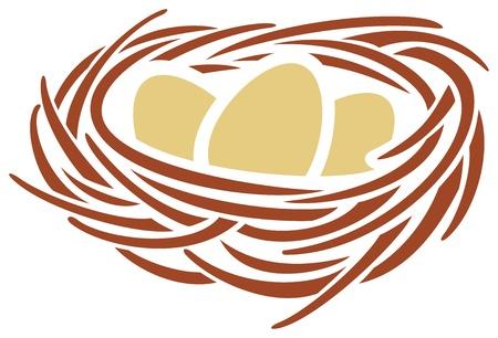 nido de pajaros: huevos y nidos Vectores