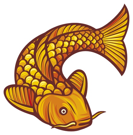 pez carpa: peces koi ilustración vectorial de un japonés o chino inspirado peces koi carpa Vectores