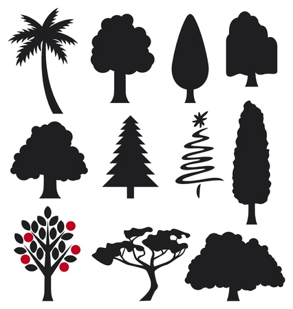 bushy plant: collection of trees silhouettes  collection of trees for design