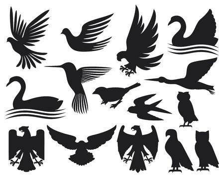 black swan: set of birds silhouettes  birds set, hummingbird, dove, sparrow, small bird, owl, swan, stork, eagle, falcon  Illustration