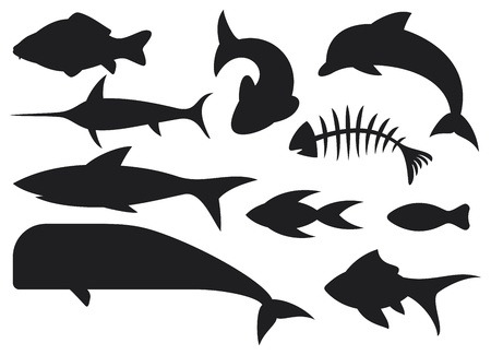 dolphin fish: fish icons set  dolphin, fish bone, carp fish, shark, whale, swordfish, stylized fishes  Illustration