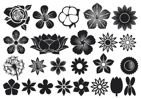 collection of flowers  flower set, lotus flower, dandelion, cherry blossom flower, rose, cotton, tulip, violet, hibiscus  Vector