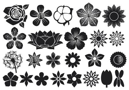 collection of flowers  flower set, lotus flower, dandelion, cherry blossom flower, rose, cotton, tulip, violet, hibiscus Stock Vector - 18787550