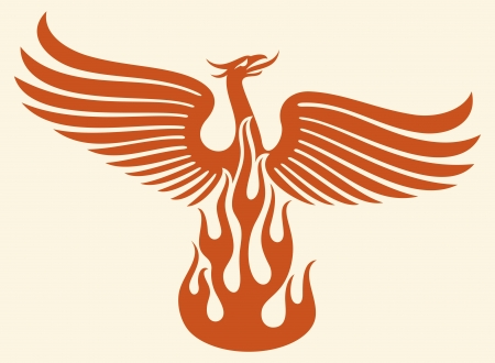 ave fenix: P�jaro de Phoenix