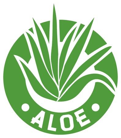 agave: aloe vera símbolo