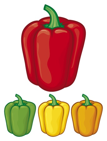 peper: sweet bell peppers  green, red, yellow and orange bell peppers