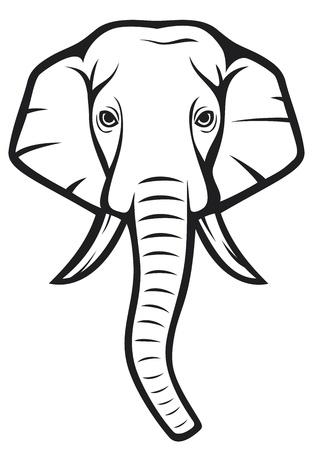 elephant head  indian elephant  Vector