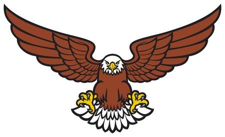Eagle Stock Vector - 20303297