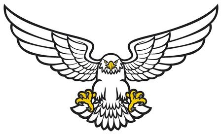 Eagle Stock Vector - 20303298