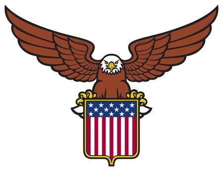 american eagle  usa shield  Illustration
