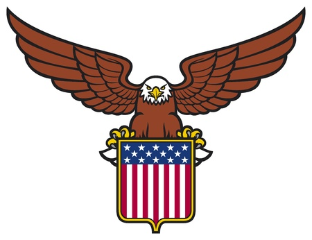 cross hatched: american eagle  usa shield  Illustration