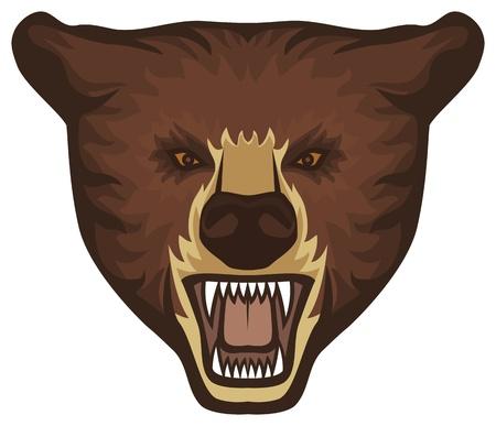 bear head Stock Vector - 20591667