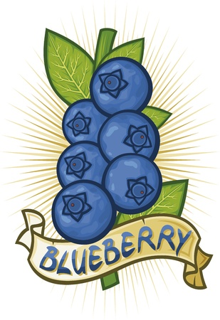 blue berry: blueberries label