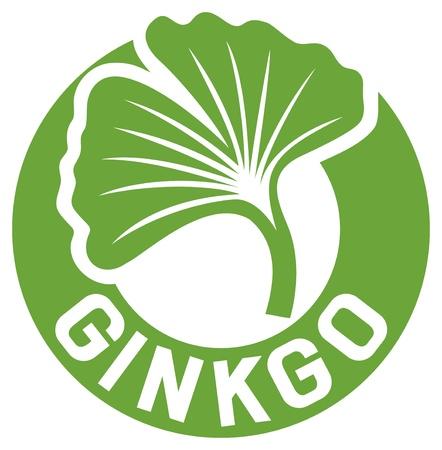 gingko: ginkgo biloba symbol Illustration
