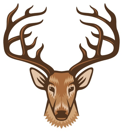 huge antlers: deer head Illustration