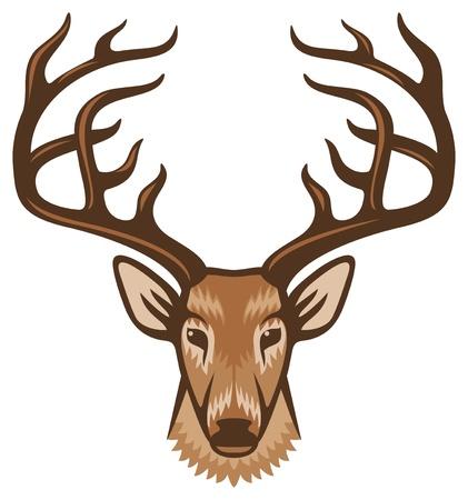head to  head: deer head Illustration