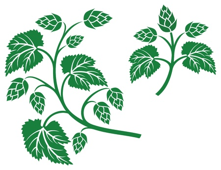hops leaf design