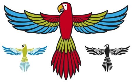 parrot flying: parrots flying