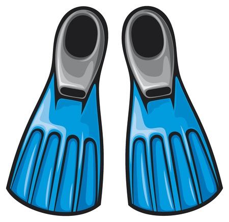 flippers: blue flippers  fins