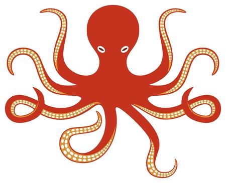 octopus: octopus oceaan octopus en tentakels