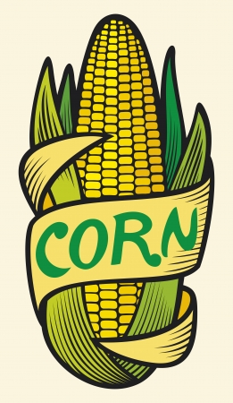 corn crop: corn label  corncob symbol, corn sign, corncob with green leaves label
