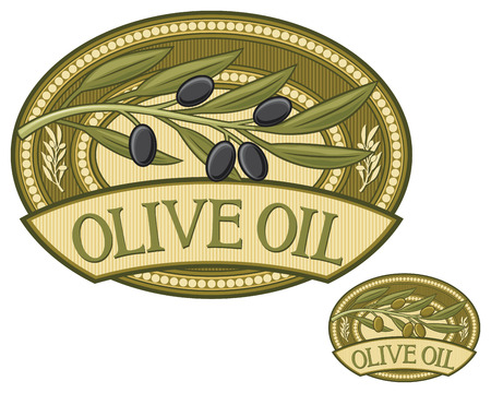 rama de olivo: etiqueta de oliva aceite de oliva rama, etiqueta del aceite de oliva, aceite de oliva insignia Vectores