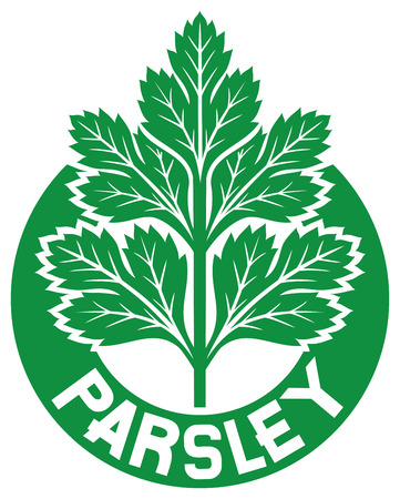 fragrant bouquet: parsley label  parsley symbol, green leaves of parsley