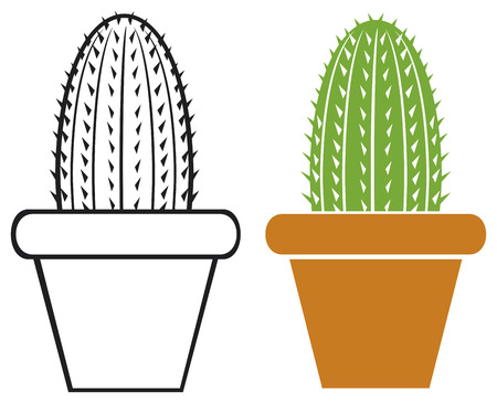 plant pot: cactus in a pot