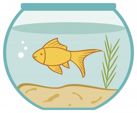 goldfish in a bowl  bowl and fish, golden fish in aquarium  Illustration