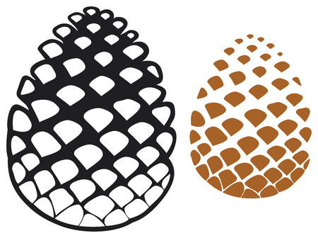 pinecone: pine cone  pine tree cone, pinecone  Illustration