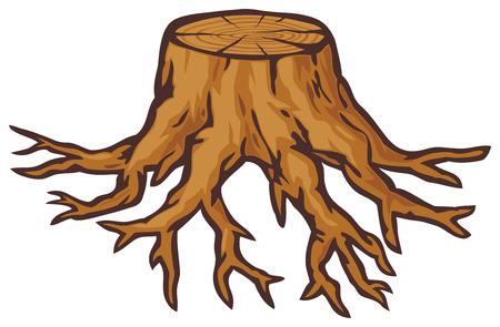 knippen: oude boomstronk met wortels