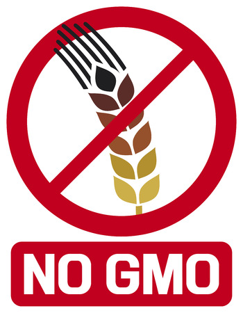 no GMO label  GMO prohibited sign, stop genetically modified foods icon  Vector