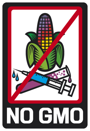 non cultivated: no GMO label  GMO prohibited sign, stop genetically modified foods icon  Illustration