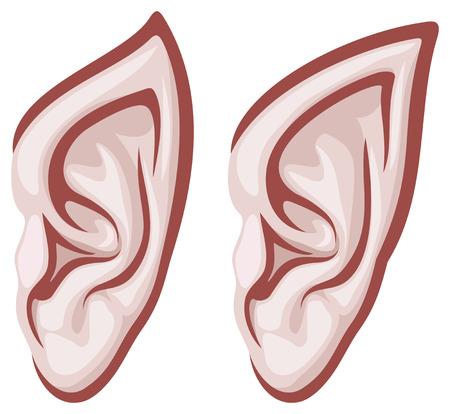 elf ears Illustration
