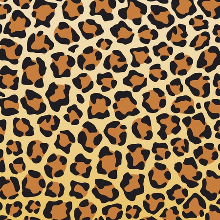 leopard: leopard skin background leopard skin texture
