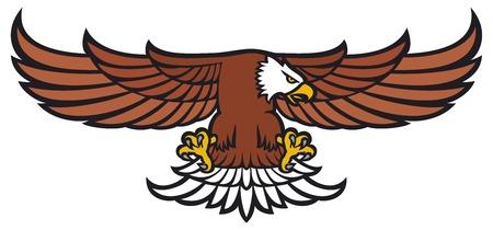 swooping: flying eagle (eagle mascot, american eagle )