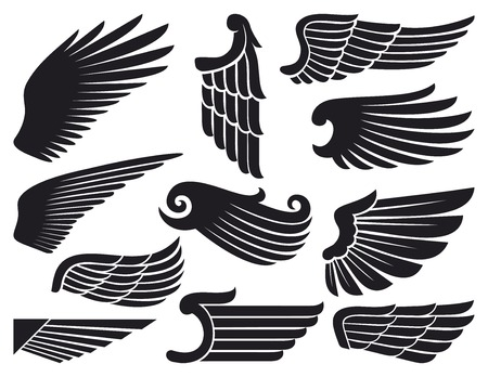 engel tattoo: Fl�gel Sammlung Illustration