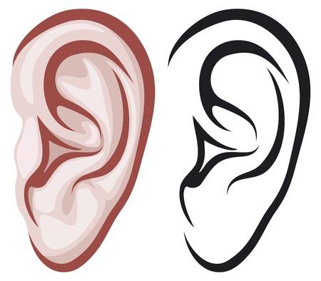 by ear: ear Illustration