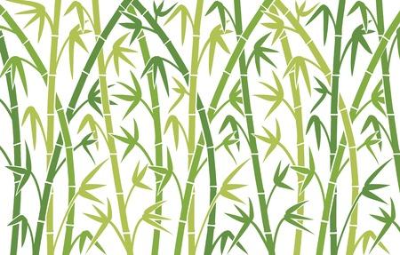 vector de fondo con bambú verde tallos de bambú de fondo sin fisuras, ilustración vectorial de bambú, silueta de árboles de bambú fondo Ilustración de vector