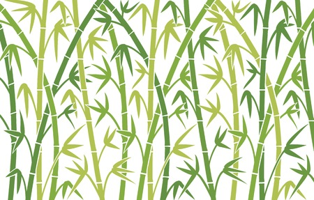 Wektor tła z zielonym bambusa łodygi bambusa bez szwu tła, ilustracji wektorowych, bambusowe bambus sylwetki drzew tle Ilustracje wektorowe